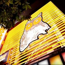 <HOOTERS×阪神タイガース>大阪店で初のスポーツイベント開催!
