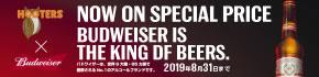 期間限定でバドワイザーが500円!